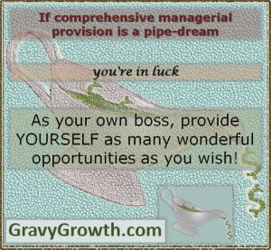 business startup, be your own boss, manage yourself, business, entrepreneurship, Greg Hixon, GravyGrowth, Effective managers, Self Management